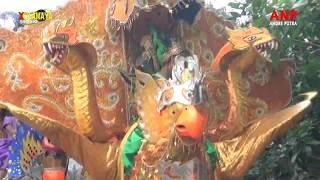 Download Lagu ~05 Langka Perasaane//Singa Dangdut ANP (Andre Putra) mp3