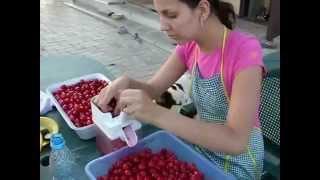 видео машинка для удаления косточек из вишни