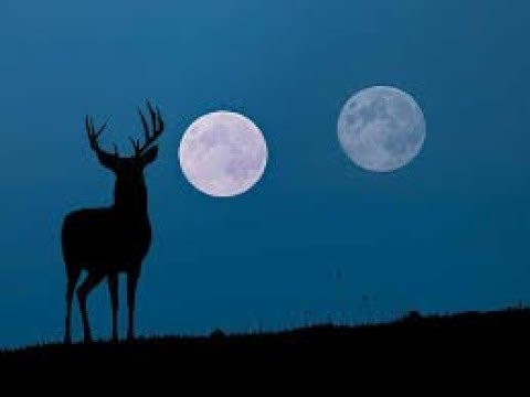 The July full moon is coming this week. It's a 'buck moon.'