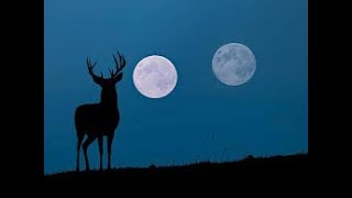 Full Buck Moon Eclipse In Capricorn | July 2019 **ALL SIGNS** (SPIRITUAL VALUE | ACCEPT YOURSELF)