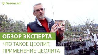 видео Сорбенты для очистки организма: названия препаратов, правила применения