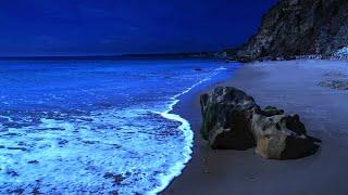 Fall Asleep Naturally With Ocean Sounds, Most Relaxing Nature Sounds For Deep Sleeping (Praia Santa)