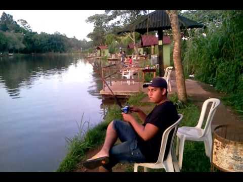 Lago Verde Tambaqui 20 Kilos