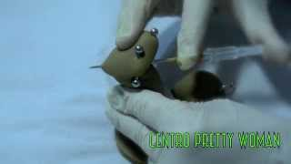 Piercing Apadravya (Genital)
