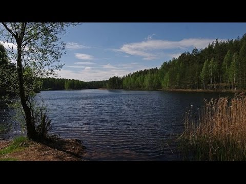 Jaanus Terasmaa - Who Protects Our Lakes?