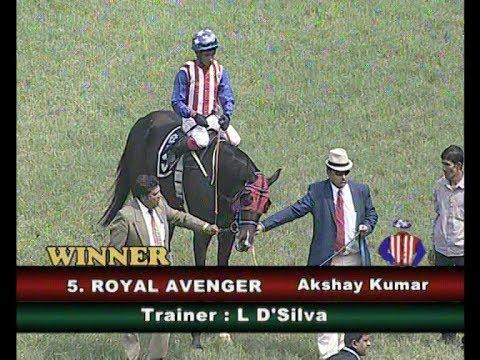 Royal Avenger with Akshay Kumar up wins The P V G Raju Memorial Cup 2018