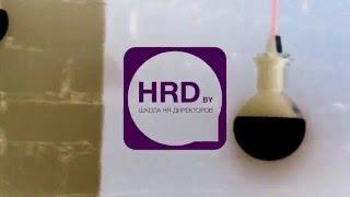 Дмитрий Новицкий | Как расcчитать оптимальное количество персонала | Школа HRD Executive(, 2016-03-03T11:27:11.000Z)