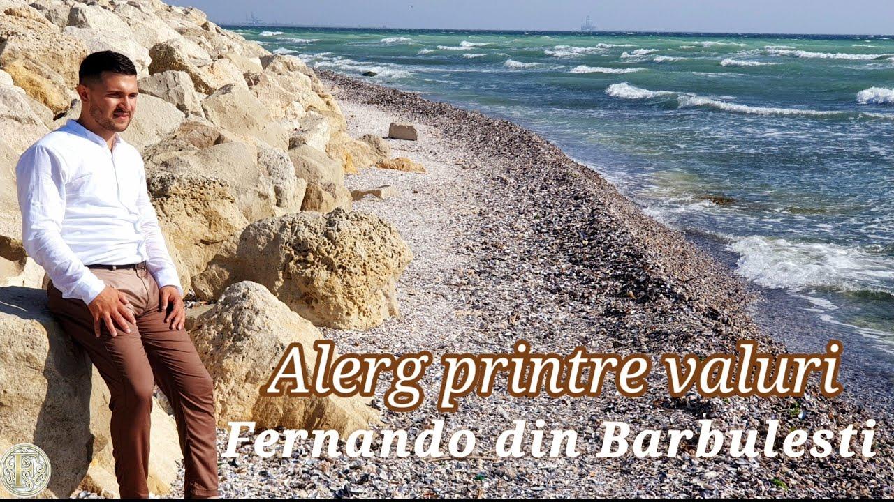 Download Fernando din Barbulesti  - Alerg Printre Valuri 🌊