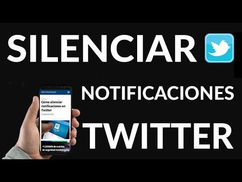 ¿Cómo Silenciar Notificaciones en Twitter?