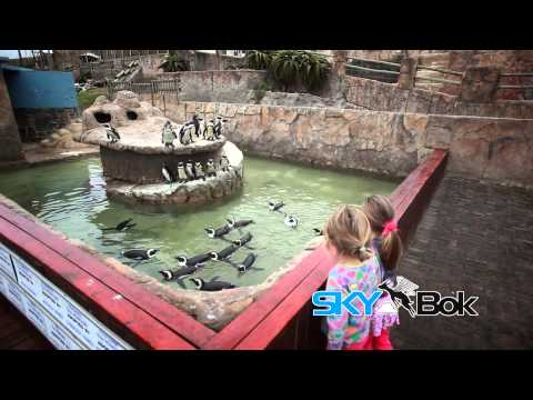 Skybok: East London Aquarium (East London, South Africa)