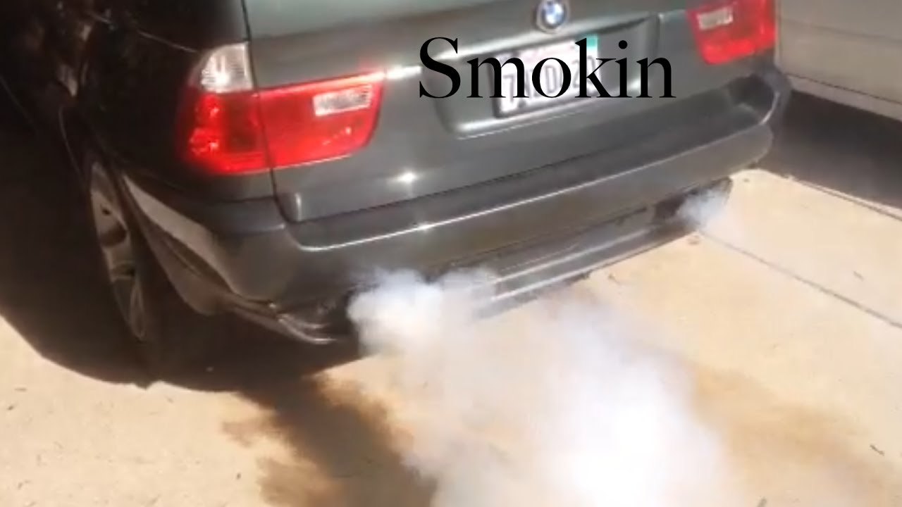 Stop Your Bmw Burning Oil Stop Smoke From The Tail Pipe For Under  No Additives Car Auto Suv