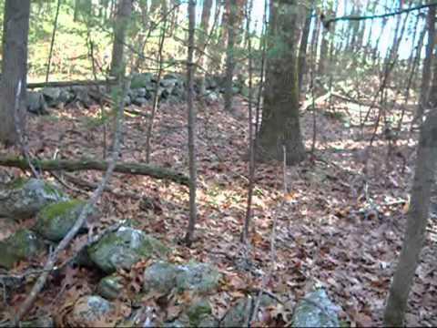 A park, the woods, a chicken hook and a bit of deer  0001