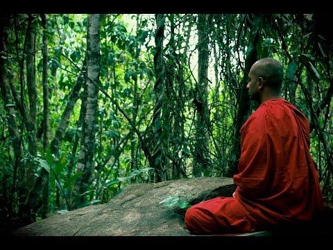 Musica Per Meditazione Guidata - Musica Meditazione Osho - Aforismi Sulla Meditazione