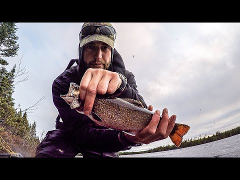 Fishing For Tasty Brook Trout In A Canoe