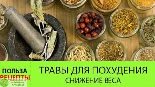 Травы для похудения  Сбор трав СЖИГАЮЩИХ жир! Как похудеть с помощью трав