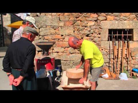 Festa do Pão 2015 em Carnicães. Peneirar a farinha.