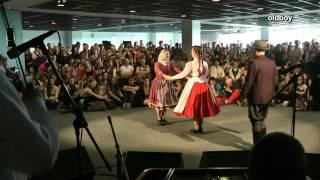 Hungarian Folk Dancer Families 11