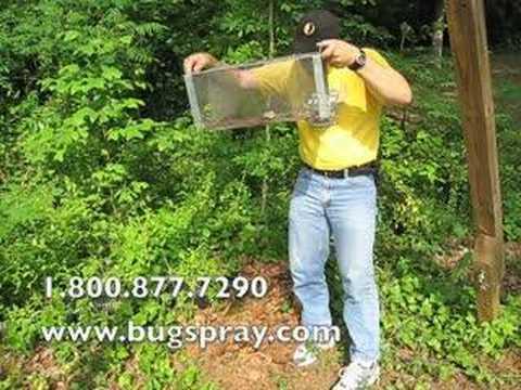Copperhead in trap