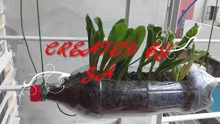How To Make Hanging Pot/Planter Using Plastic Bottles///....