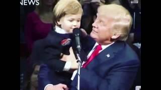 Donald Trump madlipz