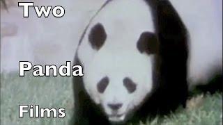 "Classic Sesame Street - Two ""Giant Panda"" films"