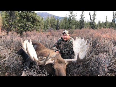 2019 Alaska Moose. Full Video Of The Moose Hunt.