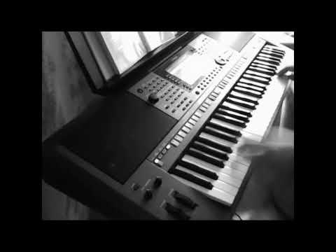 The Cranberries - Animal Instinct (Yamaha PSR S770 Cover)