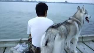 2006 Summer With Siberian Husky Hana,  Oyodo River