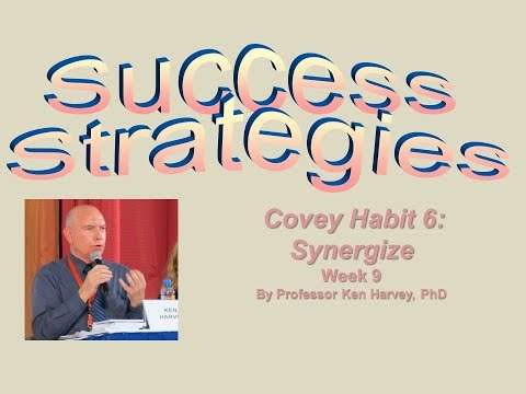 Success Strategies - Synergize