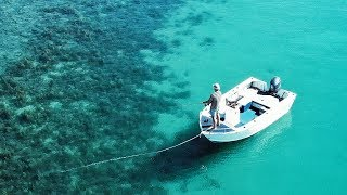 EP 12 - SQUID FISHING - Crispy Fried Calamari Recipe (Amazing Water)   Catch n Fry