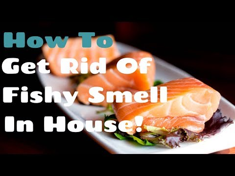 How To Get Rid Of Fishy Smell In House - Say Goodbye To Fish Oder
