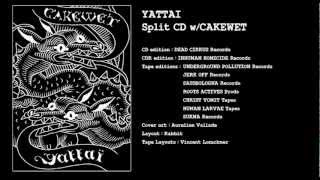 Yattai split w/Cakewet : 8/ Everyone has AIDS