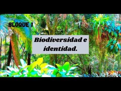 Download Bloque 1. Tema 1. La biodiversidad mexicana.