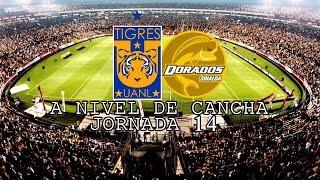 Tigres vs Dorados | A Nivel De Cancha