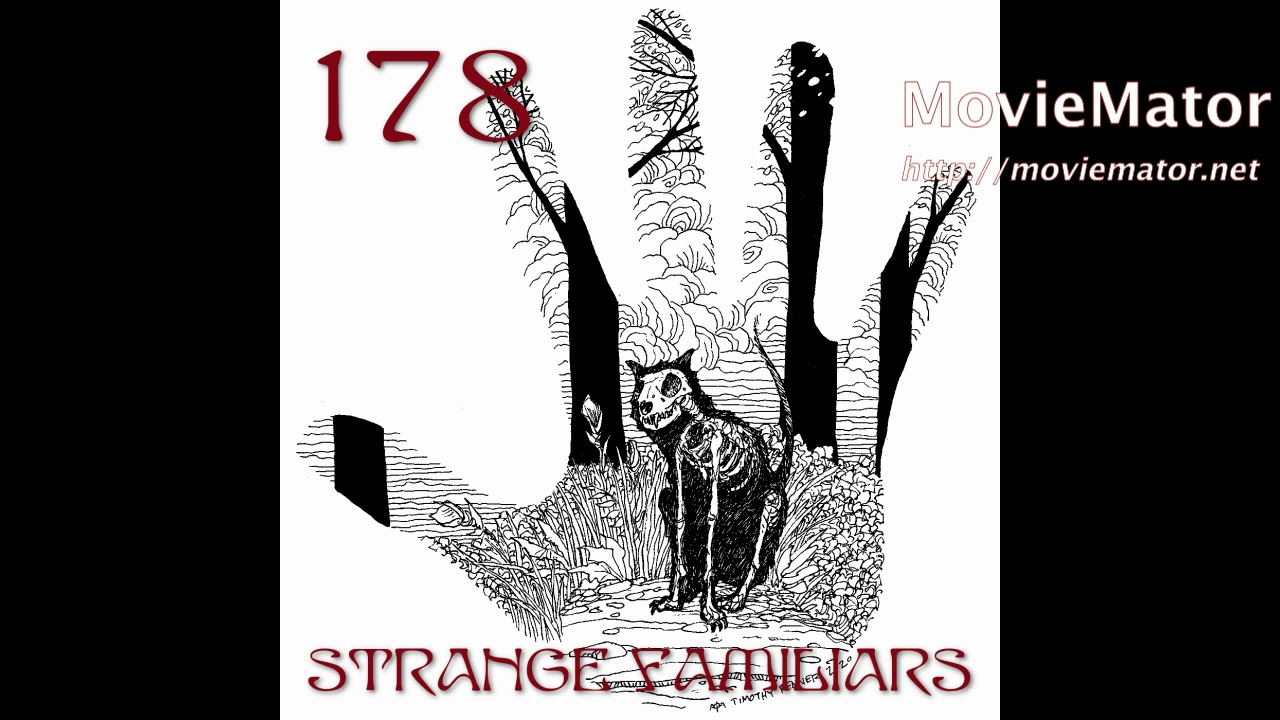 Episode 178: Shadow Figures, Orbs, and Other Oddities