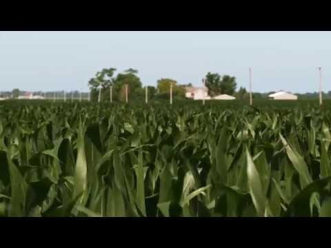 Journey to Harvest: Illinois