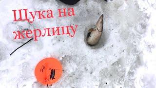 ЛОВИМ ЩУКУ НА ЖЕРЛИЦЫ И БАЛАНСИР Озеро в Нижегородской области
