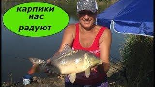 Рыбалка# Ловим Сазана и Королевского карпа  (зеркальный ) ! Рыбалка с ночевкой .
