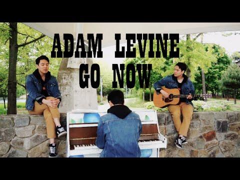 Adam Levine - Go Now(Sing Street OST) James Ash Cover