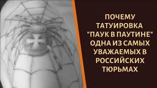 """Что означает на зоне татуировка """"Паук в паутине"""""""