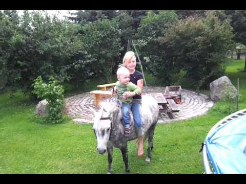 Pony Spiele Zum Reiten