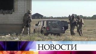 В Дагестане в ходе спецоперации уничтожены три террориста.