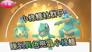 小鋸鱷社群日,八隻異色(色違),換到最稀有的亮晶晶,對戰實測 - 台語精靈寶可夢GO