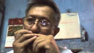 Harmonica độc tấu Hồn Quê
