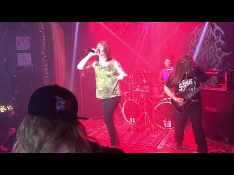 Born To Expire Live Jamfest 2017 Howl Gallery/Tattoo @ Fort Myers, Florida 04/07/17