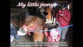 mlp. Пони животные. Очень веселая песенка.Видео для детей. Отдых на природе!