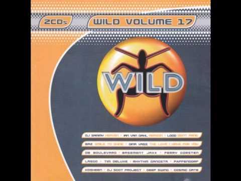 WILD FM VOLUME 17 - KCB MEGAMIX (WILD WEEKENDS)