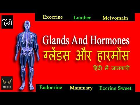 Glands और Hormones के बारे में जानकारी हिंदी में