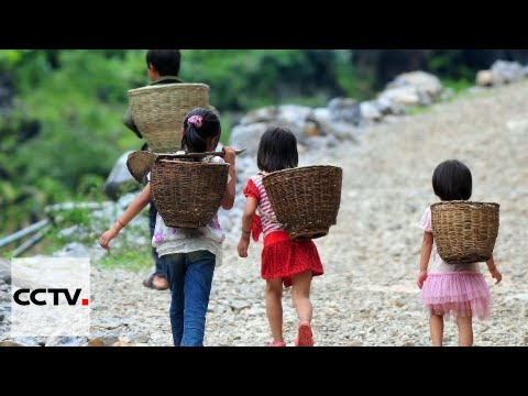 Child Nutrition In Rural China: Free-lunch project ensures nutritious lunches