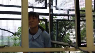 Publication Date: 2014-09-17 | Video Title: FIST 聖傑靈女子中學候選內閣 內閣成員介紹